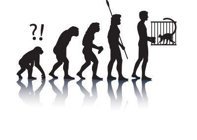 visuel lemur-grafik - l'évolution