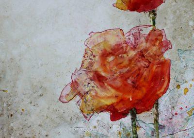 Aquarelle - Roses